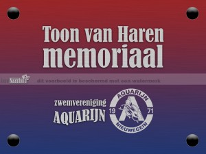 aquarijn bord 20 x 15 cm memoriaal
